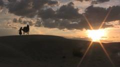 Camel in the sahara desert sunset leading - stock footage