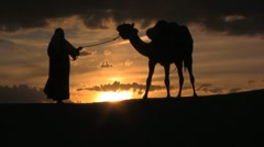 Camel in the sunset with man leading in the sahara desert sunset - stock footage