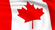 Flying flag of canada | looped | Stock Footage
