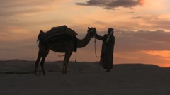 Man pets his camel in the sahara desert sand dunes - stock footage