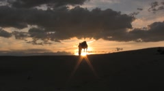 Man standing with camel in the sunset sahara desert sand dunes - stock footage