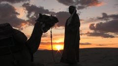 Petting a camel while watching the sunset sahara desert sand dunes - stock footage