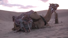 Sitting in the desert with my camel sahara sand dunes - stock footage