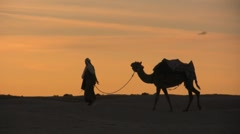 Walking through the sahara desert with a camel sunset - stock footage