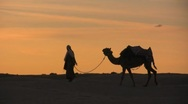 Walking through the sahara desert with a camel sunset Stock Footage