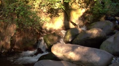 A Stream at sunset Stock Footage