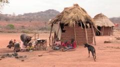 Kenya: Feeding the Family Stock Footage