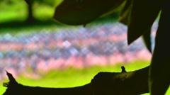 Rack focus to September 11 memorial 02 Stock Footage