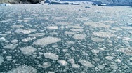 Stock Video Footage of Drifting Arctic Ice Floes