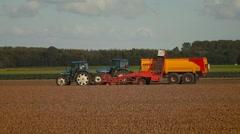 Onion Harvesting - stock footage