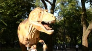 Stock Video Footage of Exhibition of dinosaurs. Tyrannosaurus rex