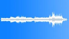 Jungle ambiance Sound Effect