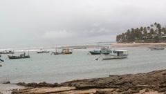 Praia do Forte Beach - Brazil - stock footage