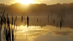 Misty morning sunrise - stock footage