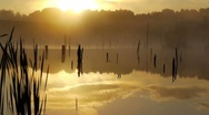 Stock Video Footage of Misty morning sunrise