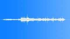 PalmTreeCrackli78139 - sound effect