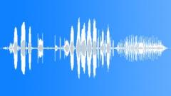ParadiseShelduck66098 - sound effect