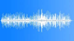 PiedCrestedCucko8093 - sound effect