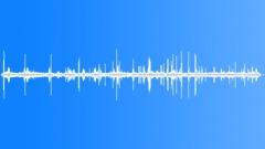 PineWoodsSpring72046 - sound effect