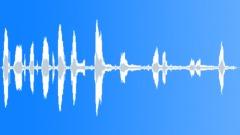 Stock Sound Effects of IndianElephantB79127