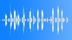 KerguelenFurSeal10089 - sound effect