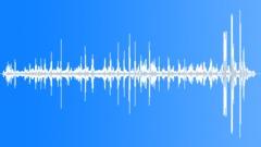 KerguelenFurSeal10087 Sound Effect