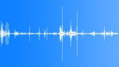 KerguelenFurSeal5052 - sound effect