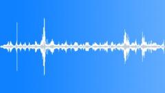 KerguelenFurSeal5051 - sound effect
