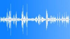 KerguelenFurSeal5049 - sound effect