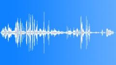 KerguelenFurSeal5045 - sound effect