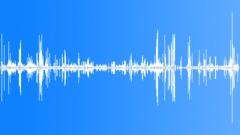 KerguelenFurSeal9042 - sound effect