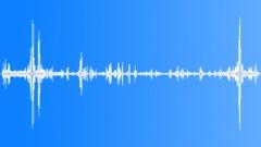 KerguelenFurSeal9038 - sound effect