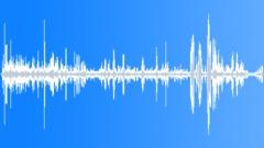 KerguelenFurSeal9034 Sound Effect