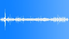 RainforestAtmosph61115 Sound Effect