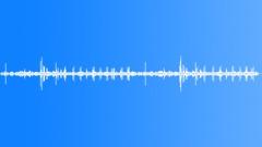 DesertShrubAtmos67083 Sound Effect