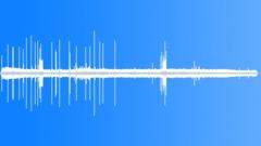 TropicalWoodland33045 Sound Effect