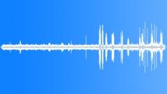 Stock Sound Effects of CoastalWoodland74170