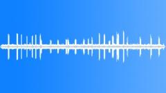 Stock Sound Effects of CoastalWoodland71035