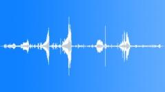 SavannaMonitorC27059 Sound Effect