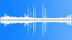 SavannaDAYWith72026 Sound Effect