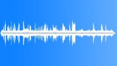 WetlandAtmosphere39146 Sound Effect