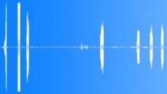 WetlandAtmosphere19102 Sound Effect