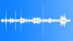 WetlandAtmosphere39145 Sound Effect