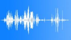ChimpanzeeCries83209 - sound effect