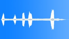 AfricanBuffaloM20148 - sound effect