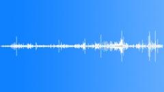Stock Sound Effects of ElephantWalking71119