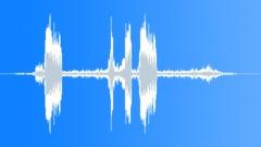 ShetlandPonyWhi71106 - sound effect