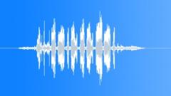 ShetlandPonySta90115 - sound effect