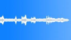 CarpenterBeeAt74184 Sound Effect