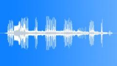 CarpenterBeeIn86032 Sound Effect